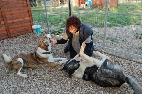 23-11-2012 Bruno e Chiara arrivano in ENPA